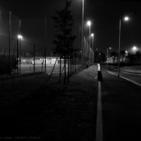night players